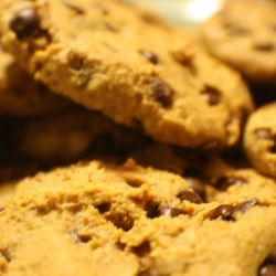 Grain Free Chocolate Chip Cookie